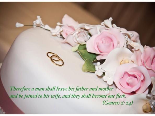 Gen 2: 24