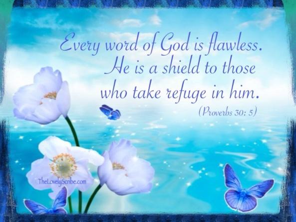 Prov 30: 5