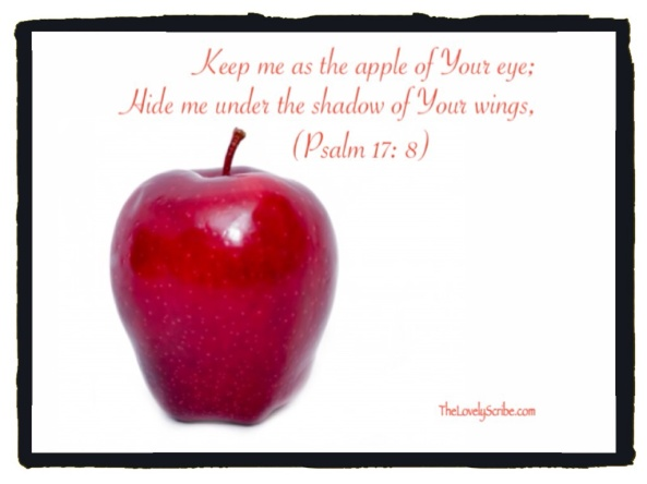 Psalm 17: 8