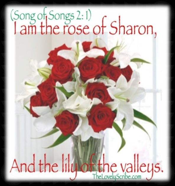 Song of Songs 2: 1