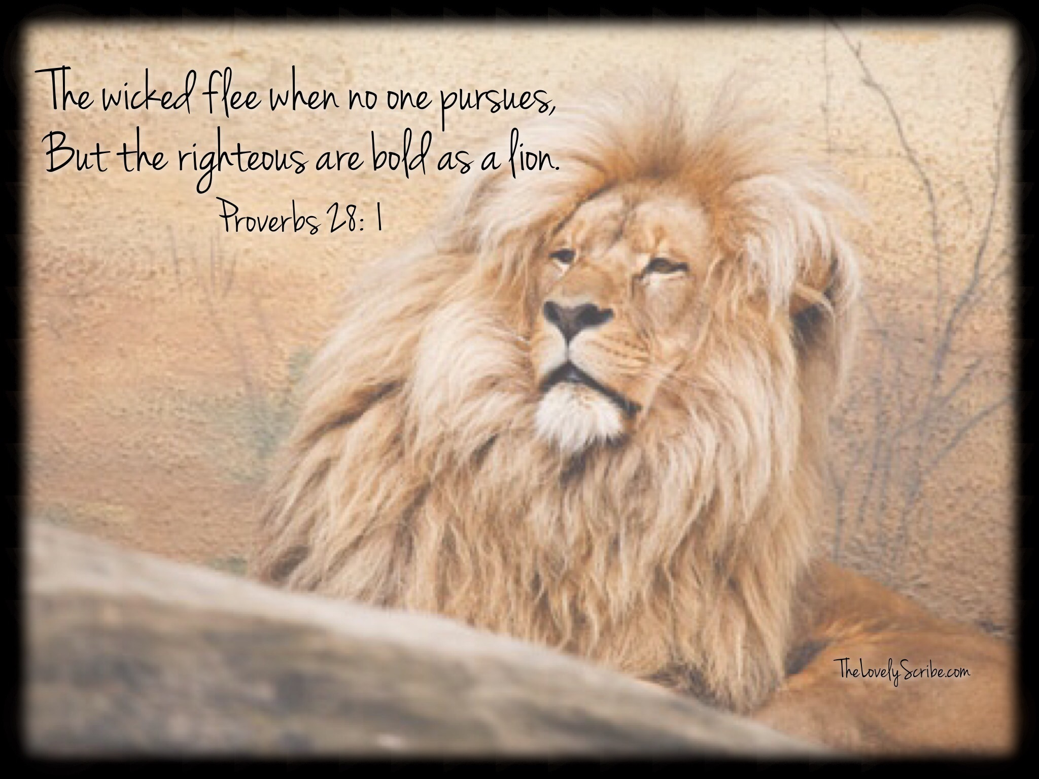 The righteous are bold as a lion!   TheLovelyScribe com